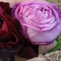roza alandalib