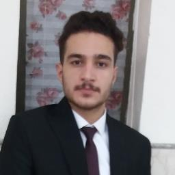 Mostafa V.N