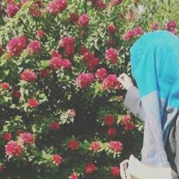 Omama Zainab