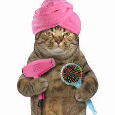 🐭🎀  Madame Meow  🎀🐭